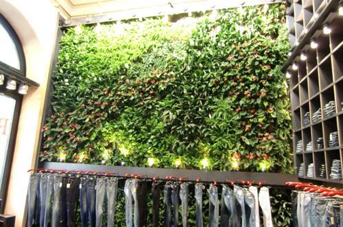 Merletti garden design designer di parchi e giardini for Progettazione giardini siena